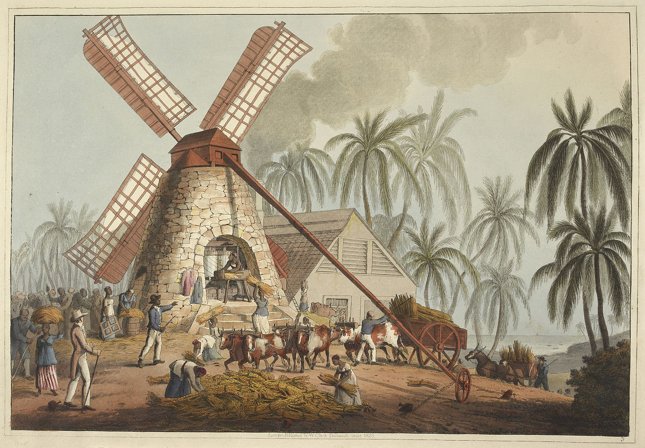 Matthew Lewis describes the process of making sugar